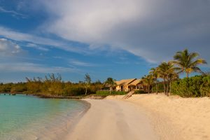Three Bees at Harbour Island | Clear Waters and Impeccable Coastline