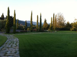 Tenuta di Casanova | Gardens and Lawns